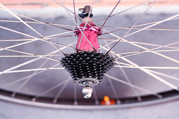 Chris King Classic Hubs On The Road