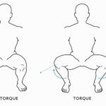 Generating torque in the hips